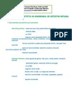 _regim_SII (1).pdf