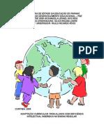 Adaptação curricular def intelec parana.pdf