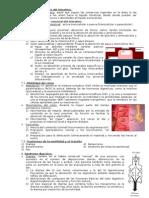 10(IV)-FP