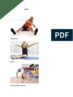 Processo de Flexibilidade