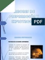 Preparacion y Explotacion