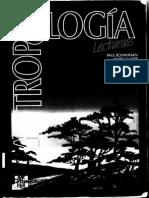 72695734-Antropologia-Bohanann