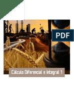 FP5S-CALDIFEINTEGRAL1.pdf