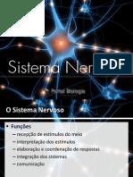 Sistema Nervoso SLIDES