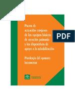 pautas_actuacion_conjunta