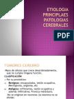 Etiologia Principlaes Patologias Cerebrales