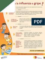 AFICHE A3 Influenza-2013