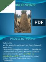 Vetiver Biomasa y Aceite
