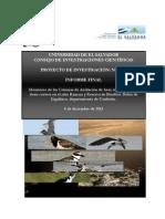 Informe Final Proyecto 10.16 Cic Ues Bahia Jiquilisco 2013
