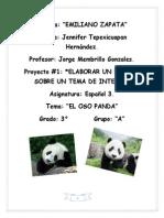 Proyecto 1 de Español