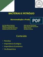 Bactérias e Petróleo