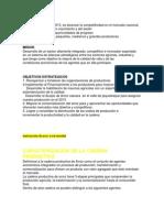 Plan de Desarollo de La Cadena Productiva en El Valle de Jeqietepeque
