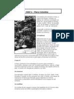 FARC.doc