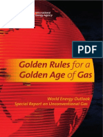 Golden Rules for a Golden Age of Gas.pdf