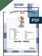 DESARROLLO DE LAS UNIDADES 2011.doc