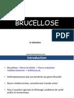 BRUCELLOSE.ppt