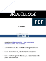 BRUCELLOSE.ppt