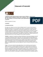 Condimentele - Prieteni Si Ajutoare PDF