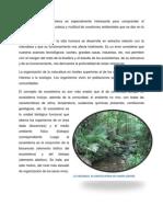 2.1 Definición de Ecosistema