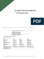 DECLINAREA ADJECTIVELOR Atributive in Limba Germana