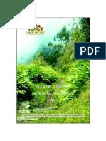 GUIA RAI.pdf