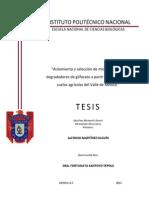 TESIS Aislamiento y Seleccion de Microorganismos Degradadores de Glifosato a Partir de Muestras de Suelos Agricolas Del Valle de Mexico
