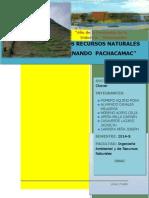 Loma de Pachacamac-lurin22