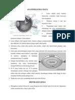 Anatomi Histologi Lensa Mata