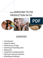 Background to Pig Production in Fiji