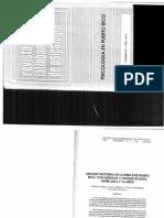 Artículo Factores EIWN R P.R.