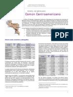 Lectura - Perfil Del Mercado Comun CA
