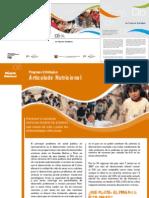 Brochure Prog Estrategicos2008 2009