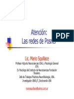 Lic. Mario Squillace - Atención redes Posner