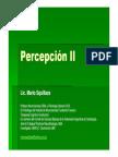 Lic. Mario Squillace - Percepción modelo de Marr