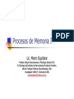 Lic. Mario Squillace - Procesos de Memoria I