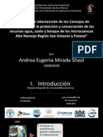 Dinámica de Intervención de Los Consejos DeMICROCUENCA Coregida