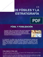 2.5 Los Fósiles y La Estratigrafia