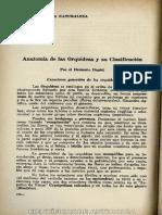 14_AnatomiaOrquideas_1959