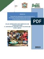 Plan Operativo de capacitación y asistencia técnica en PAPA.pdf