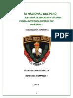 Silabo Desarrollado Ddhh i II-2013