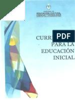 Curriculum Inicial (1)