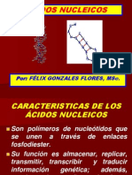 Acidos Nucleicos Fmh 6