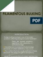 Filamentous Bulking