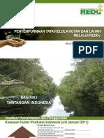 Penyempurnaan Tata Kelola Hutan dan Lahan melalui REDD+