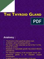 The Thyroid Gland