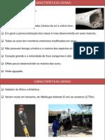 Características Gerais - Completo