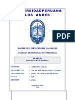 Universidad Peruana Los Andes - Informe de La Evolucion de Equimocis