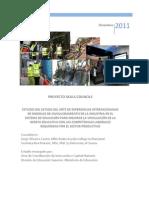Informe Skills Councils