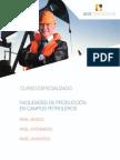 Facilidades de Producción Nivel Básico, Intermedio y Avanzado