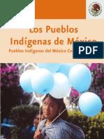 CDI - Los Pueblos Indígenas de México